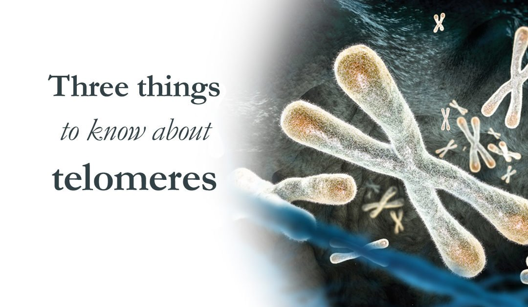 Three things to know about telomeres