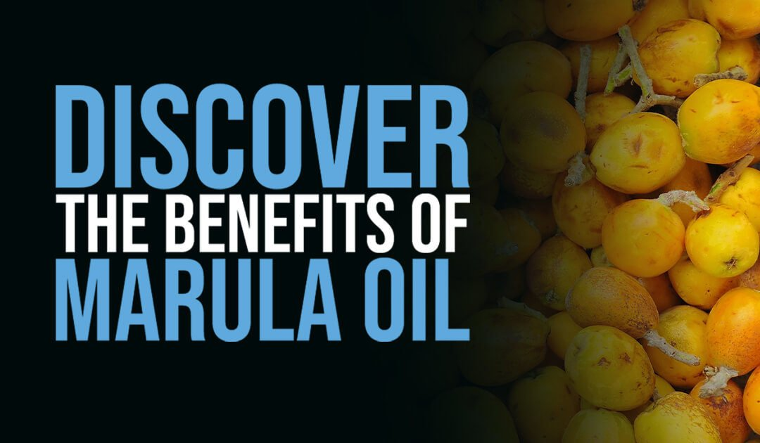 Discover the benefits of marula oil